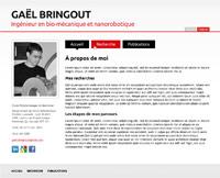 Gaël Bringout, M.A.Sc. (Screenshot)